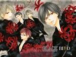 Black Bird (2)